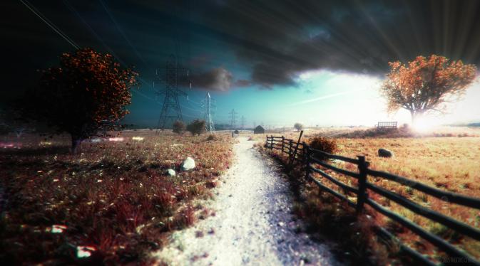 sunny_field-673x374