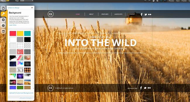 Como-Transformar-Um-Template-do-Wix-Em-Um-Site-Personalizado-03